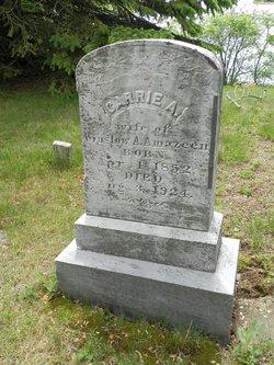 Carrie A. Amazeen