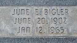 June Elzina <I>Bigler</I> Gustin