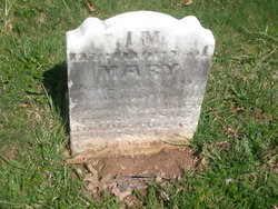 Mary Moyer Freed