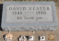 David Vester