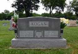 Carl David Kogan
