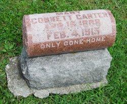 Mary <I>Cornett</I> Carter