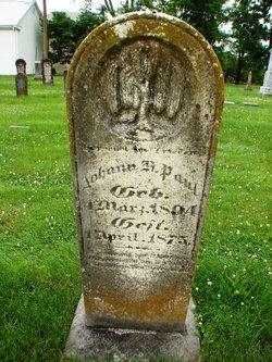 Johann S Paul
