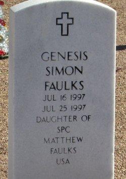 Genesis Simon Faulks