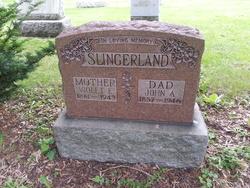 John Alfred Slingerland