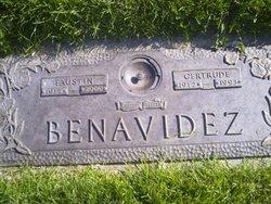 Faustin Benavidez