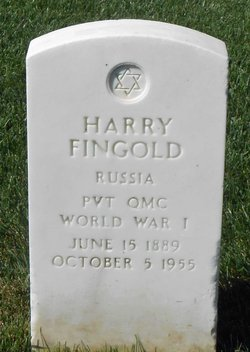 Harry Fingold
