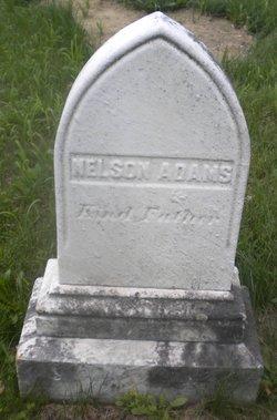 Nelson Adams