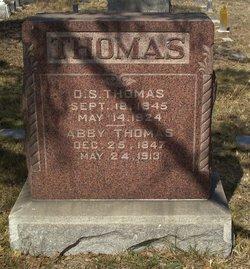 Daniel S. Thomas
