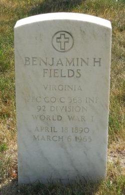 Benjamin H Fields
