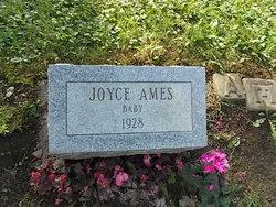 Joyce Ames