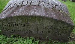 Andrew E. Anderson