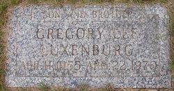 Gregory Lee Luxenburg