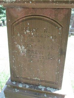 Andrew Jackson Baldwin