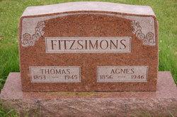 Agnes Johanna <I>Goldmann</I> Fitzsimons