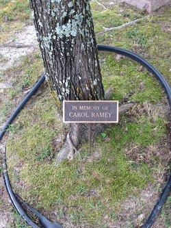 Carol Sue <I>Lankford</I> Ramey