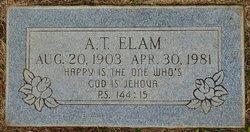 Alexander Temple Elam