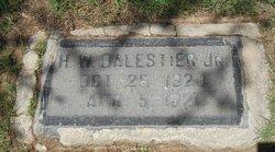 Henry Wolcott Balestier, Jr