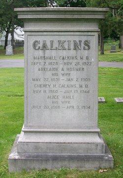 Adelaide Augusta <I>Hosmer</I> Calkins