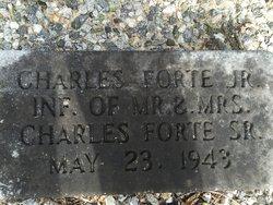 Charles E Fort, Jr