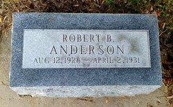 Robert B. Anderson