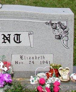 """Elizabeth Josephine """"Jo"""" <I>Hale</I> Arant"""