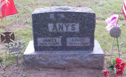 Orville James Anys
