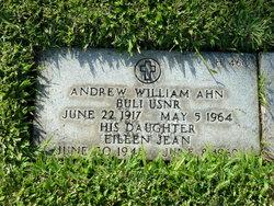 Andrew William Ahn