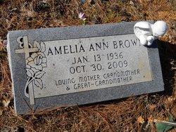 Amelia Ann <I>Richardson</I> Brown