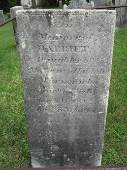 Harriet Warner