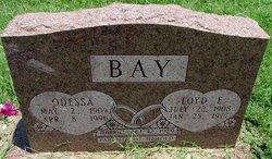 Odessa <I>Anderson</I> Bay