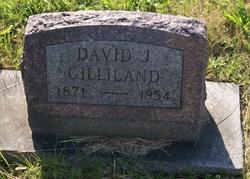 David J Gilliland