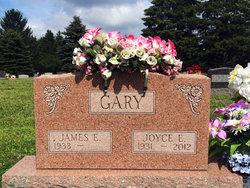 Joyce E <I>Kankamp</I> Gary