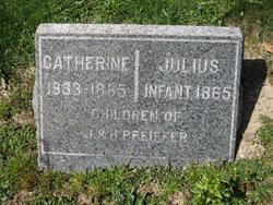 Catherine Pfeiffer