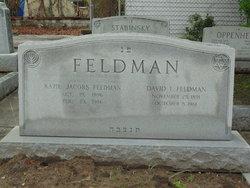 Katie <I>Jacobs</I> Feldman