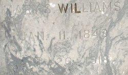 Mary S <I>Williams</I> Austin