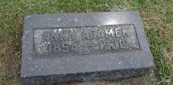 Anna Cerny Adamek (1854-1930) - Find A Grave Memorial b9d787d418