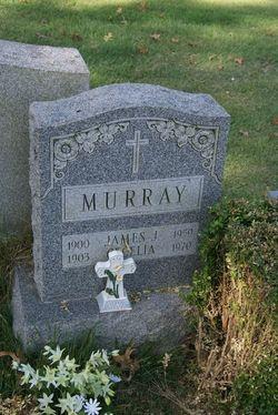 James J Murray