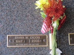 Diana Margaret <I>Lorditch</I> Cicon