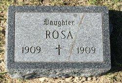 Rosa Unrein