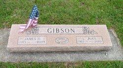 Lois Joan <I>Goodman</I> Gibson