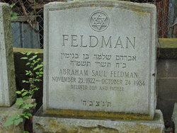 Abraham Saul Feldman