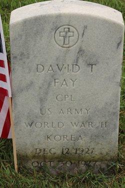 David T Fay