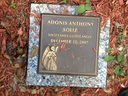 Adonis Anthony Soliz