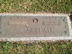 Ana M <I>Anaduluca</I> Amateau
