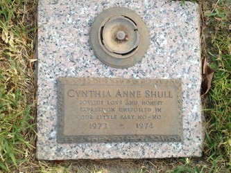 Cynthia Anne Shull