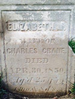 Elizabeth M. Crane