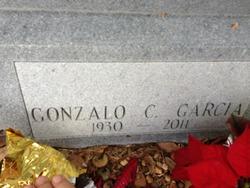 Gonzalo C. Garcia