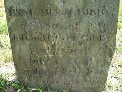 Benjamin H Gibbs