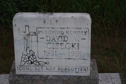 David Cisecki